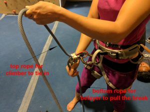 rope position in a belay device